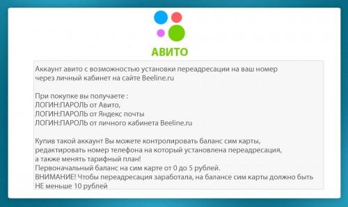 AVITO.jpg
